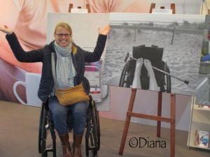 Gebruikersreviews Vicair: Diana