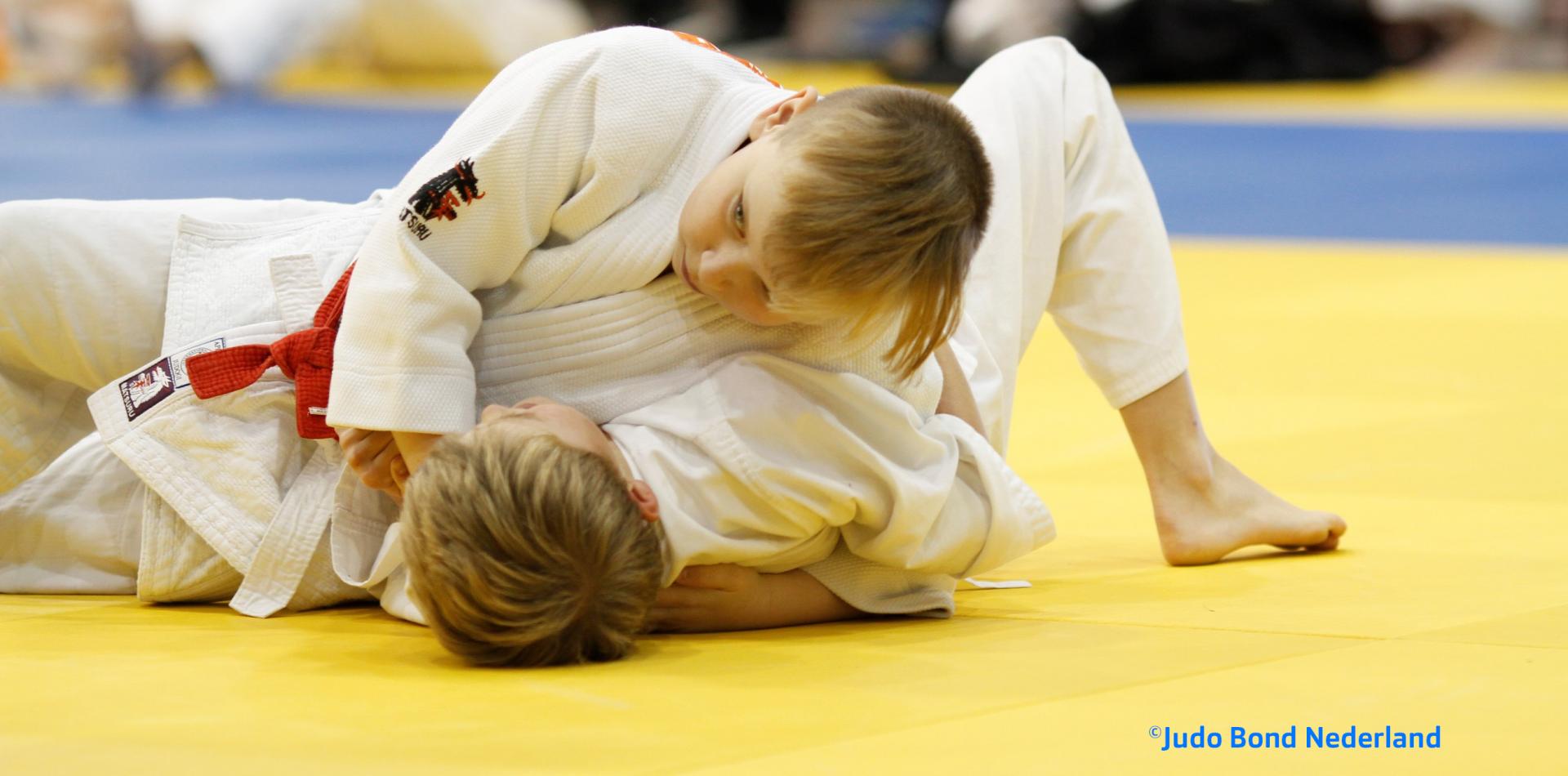 Vicair Sponsoring a-judo